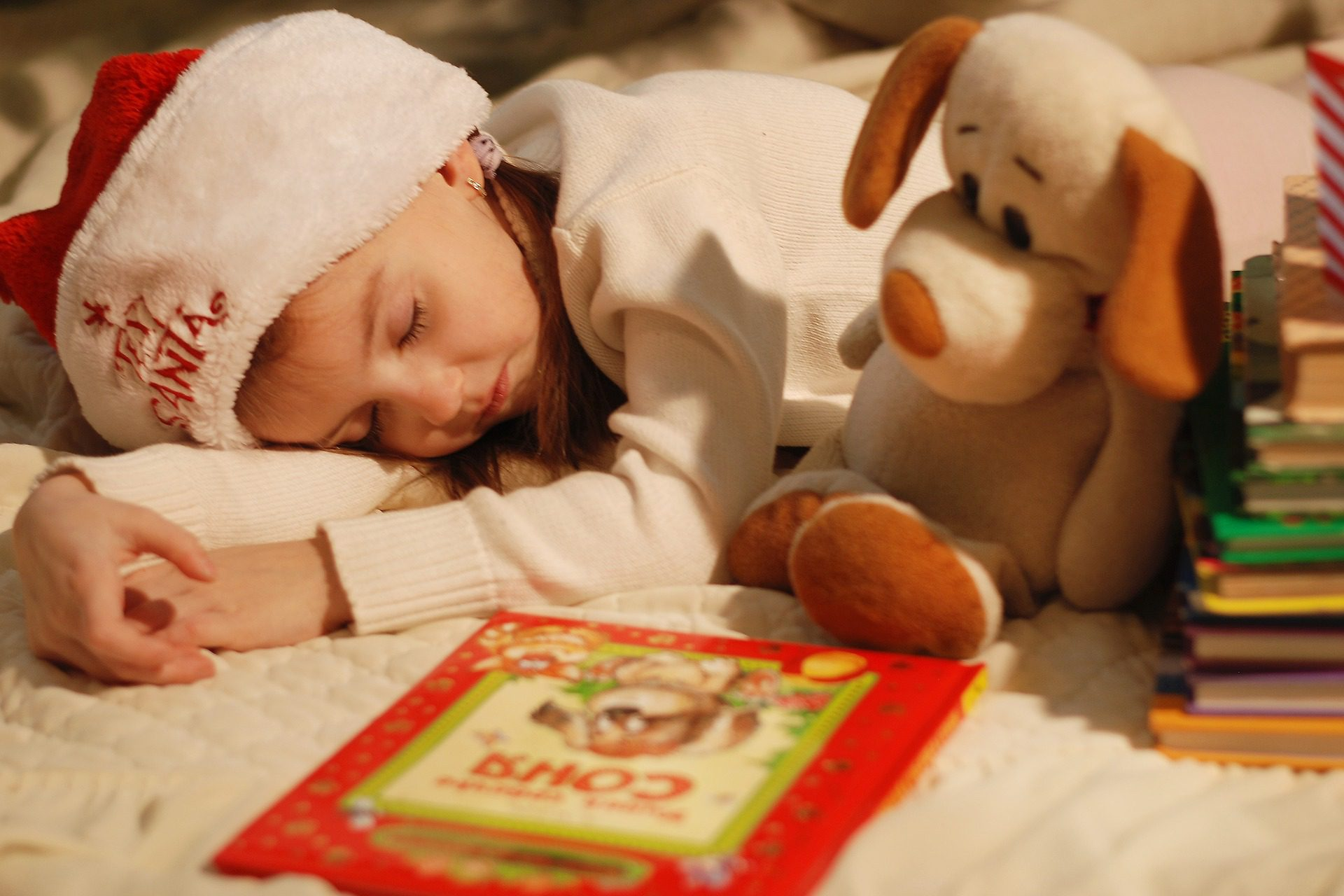 List Of 71 Best Christmas Books For Kids (Like How The Grinch Stole Christmas) 1