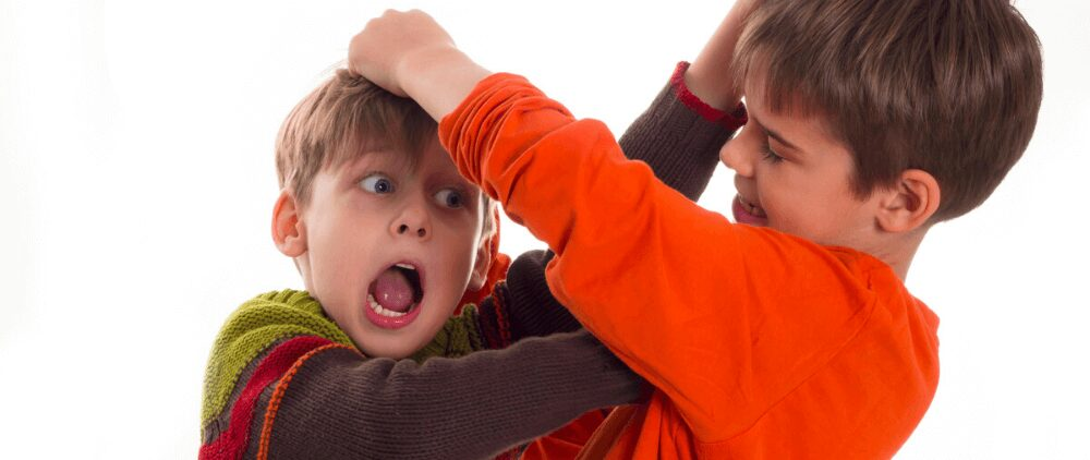 Effective And Simple Tips To Stop Sibling Rivalry And Bickering